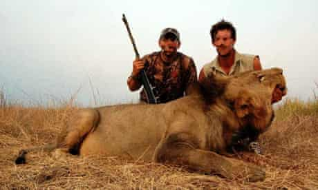 Trophy hunting in Africa : Big game trophy hunters stand over a male lion in Tanzania