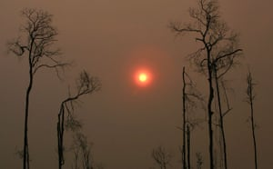 Deforestation in Sumatra: Indonesia , haze due to Forest Fires