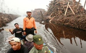Deforestation on Sumatra: Firefighters patrol on boat in search of fires Indonesia, Riau province,