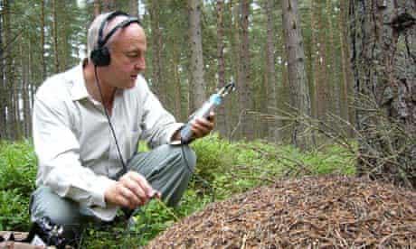Chris Watson recording ants