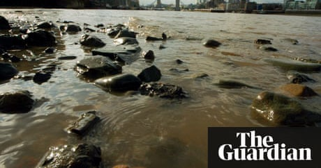 impact of humans on the river thames environmental sciences essay Hands-on science supplies for chemistry, biology, and more plus homeschool resources like microscopes, science kits, and curriculum grades k-12, college.