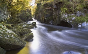 State of English rivers: Fairy Glen in Snowdonia