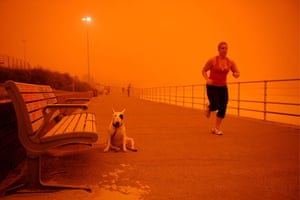 Sydney dust storm: A runner passes a dog tied to a bench