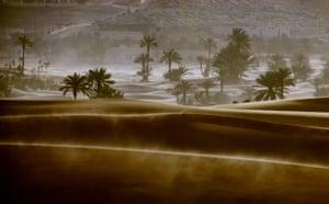 Dust storm: Sand,storm at an Oasis Kerzaz, Algeria