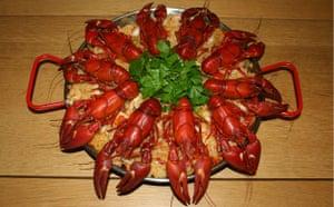 Fishing Crayfish: George Monbiot : How to catch, prepare and cook  invasive crayfish