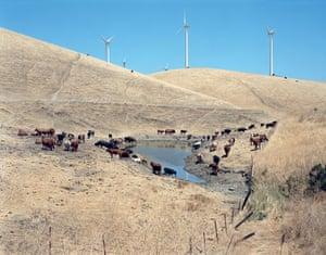 American Power: Altamont Pass wind farm, California, 2005