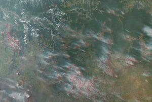 Rainforests Project: Deforestation in Democratic Republic of Congo, fires in Kasai region