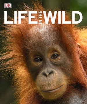 Life in the Wild: Life in the Wild cover
