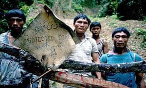 Penan tribe borneo