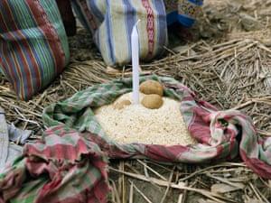 Sinking Sundarbans: Villagers of the Sundarbans receive a minimum source of food