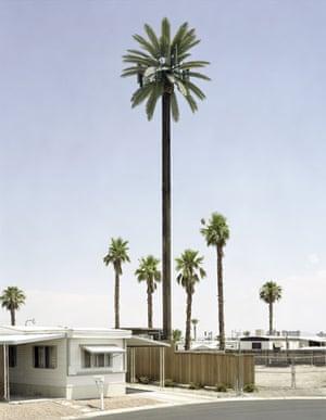 Mobile phone mast trees: Mobile Home Park, Las Vegas, Nevada, USA