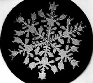 Snowflakes: Photograph by Wilson A Bentley