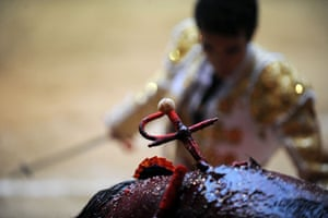 24 hours in pictures: Bullfight in Medellin, Colombia