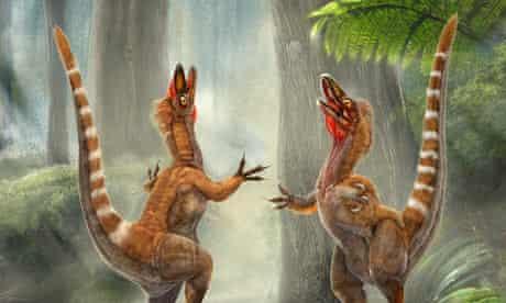 Feathered dinosaur Sinosauropteryx