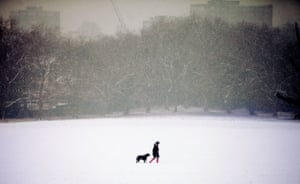 Winter weather: London: A woman walks her dog at Primrose Hill
