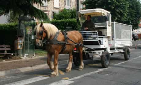 horse and cart recycling