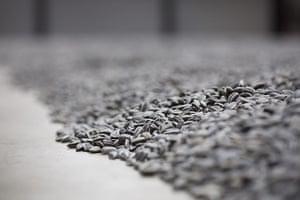 Turbine Hall: Close up of the 'Sunflower Seeds' on the floor of the Turbine Hall