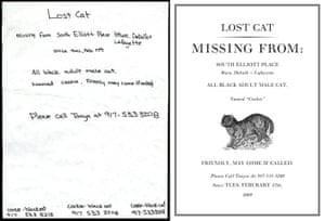 Cardon Copy: Cardon Copy, missing cat flier