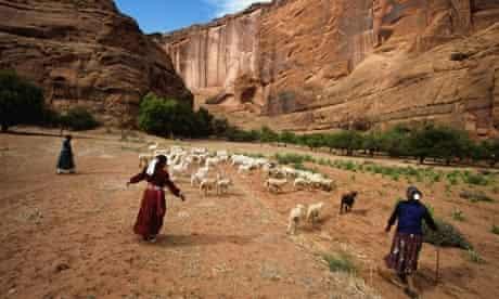 Navajo tribespeople herding sheep in Arizona