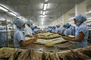 UNEP Report: Workers in Tuna factory on the Ecuadorian coast