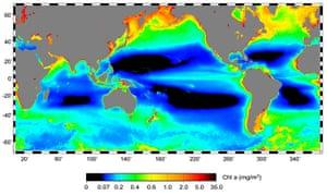 UNEP Report: Ocean Desert expanding