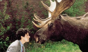 northern exposure your next box set moose