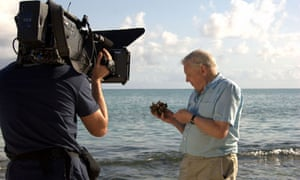 allenborough's journey sir david attenborough tv review tim dowling