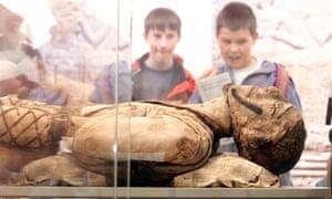 mummy in case