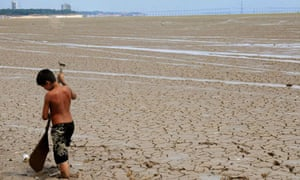 Drought in northern Amazon region