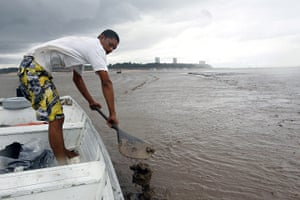 Amazonia drought: A man attempts to row through mud  on Rio Negro in Manaus, Brazil