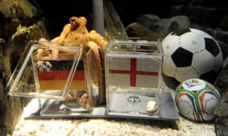 Paul the octopus predicted that Germany would beat his native England in the World Cup