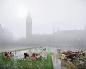 London Future images: This view across Parliament Square shows paddy fields