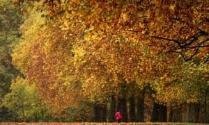 People Enjoy The Mild Autumn Weather
