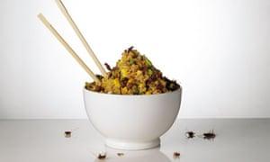 Grubs up: Cricket fried rice