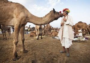 Pushkar camel fair: Jagadish Rabadi kisses one of the 70 camels