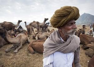 Pushkar camel fair: Pushkar Camel Fair, Rajasthan, India