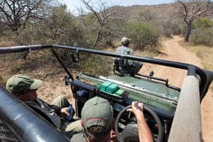 Rhinoceros: Anti-Poaching Forces Established to Combat Rhino Poaching in South Africa