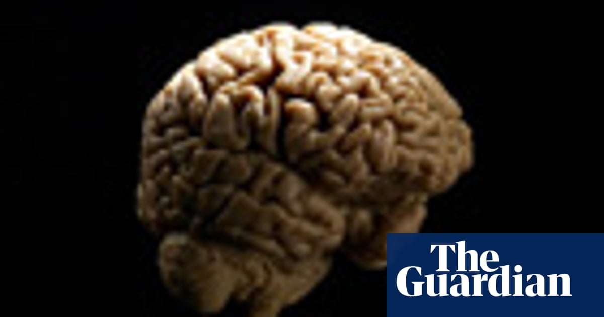Big Brains May Hold Clues To Origins Of >> Bipedalism Birth And Brain Evolution Mo Costandi Science The