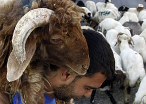 Eid al-Adha: A vendor carries a sheep after selling it to a customer
