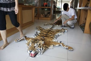 Endangered Tigers: The Big Cat Trade in Myanmar and Thailand report by WWF and TRAFFIC