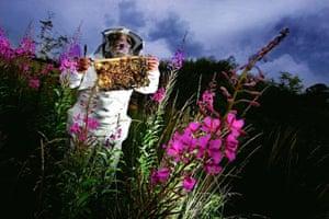 Landscape Photographer: Landscape Photographer of the Year Awards