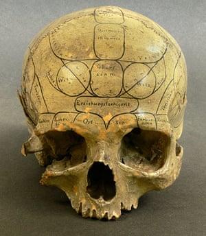 Portraits of the mind: phrenology skull