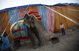 24 hours in picrtures: Rambo Circus in Mumbai