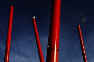 24 hours in picrtures: A seagull flies from a pole by the docks in Dublin