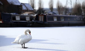 Snow and freezing hits uk: WiA Swan makes it's way across the frozen