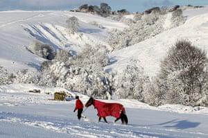 Snow and freezing hits uk: Stable hand Chrissie Busby moves horses at Riverside Livery near  Denny