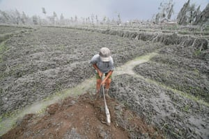 Mount Merapi: A villager works on his farm covered with volcanic ash