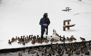 Snow today: A man feeds the ducks and geese in the snow in Bramall Park in Manchester