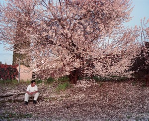 Photography Books: Antioch Creek, 2008, by Larry Sultan