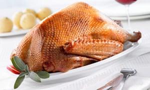roast goose